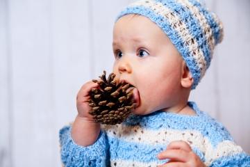 zdjęcie z szyszką podczas sesji dziecięcej Ani - 8 miesięcy